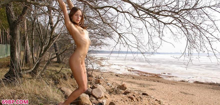 维卡的枯树又逢春